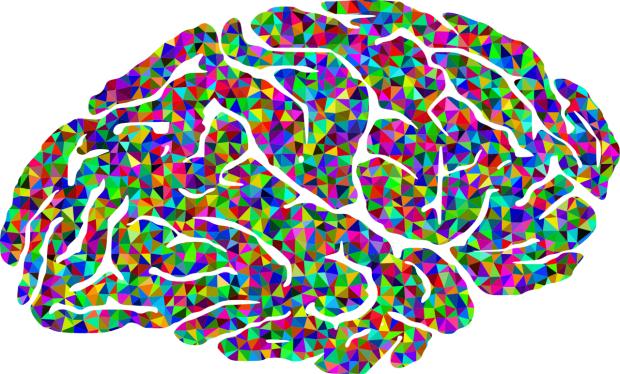 colorful-brain-1325268